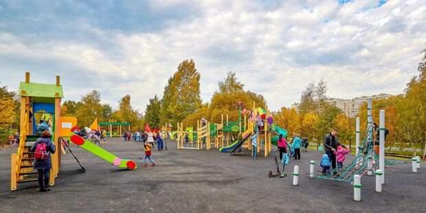 В Москве стартовало голосование по качеству благоустройства парков/ Фото mos.ru