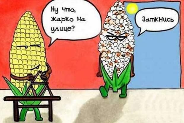 http://www.shmyandeks.ru/wp-content/uploads/2014/04/shytki_pro_leto_2.jpg