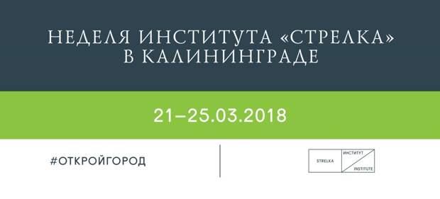 В Калининграде пройдут бесплатные лекции от КБ «Стрелка»