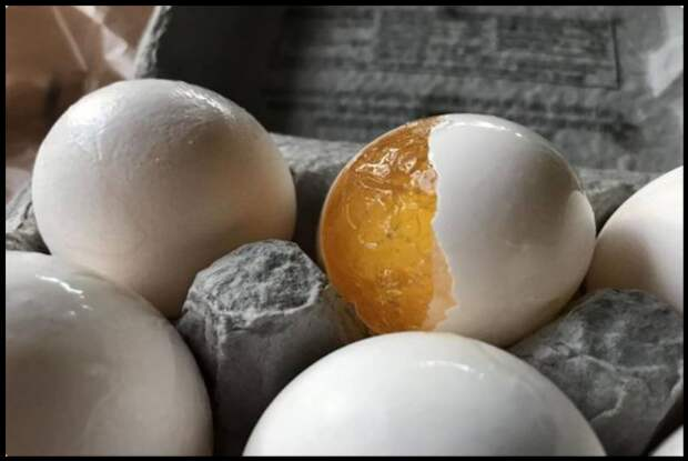 Делюсь секретом зачем я замораживаю яйца и какое вкусное блюдо готовлю из них!