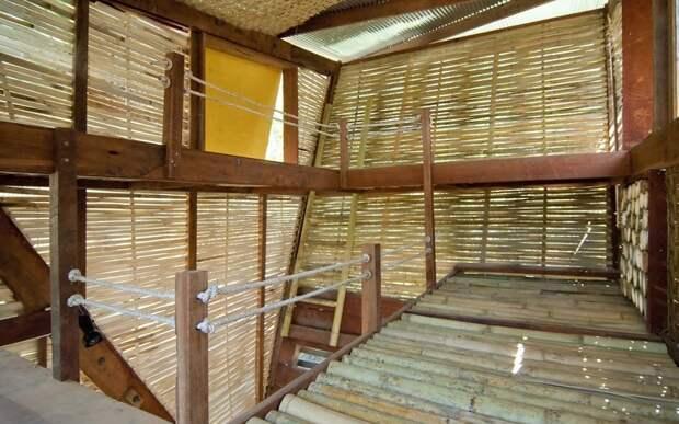 Использование бамбука в интерьере