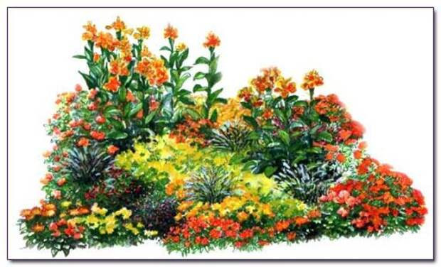 orange-flowerbed-drawing.max
