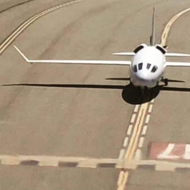 Экспериментальный самолёт Celera 500L. Тайная подготовка к прорыву