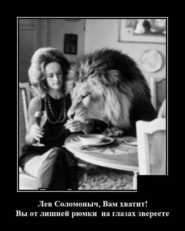 Демотиватор про льва