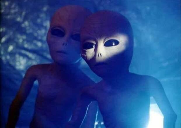 Пришельцы всё-таки существуют? (ФОТО)