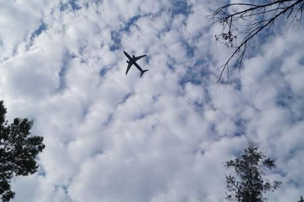 Количество рейсов в Крым достигло максимума за 5 лет