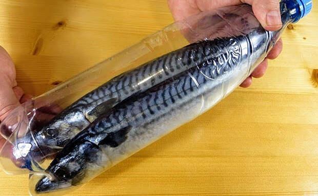 Скумбрия горячего копчения на кухне: делаем с помощью сита и обычной пластиковой бутылки