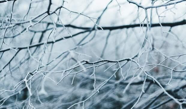 Соблюдать скоростной режим вусловиях снегопада попросили жителей Ростова