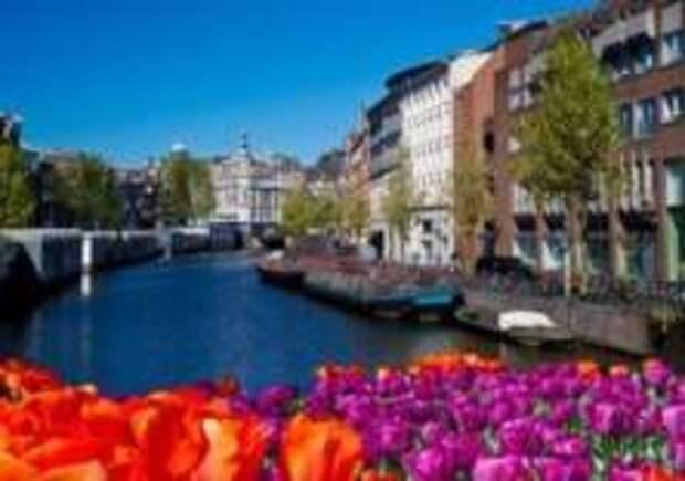 Круизные компании отказываются от Амстердама