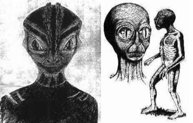 Космические знания Догонов