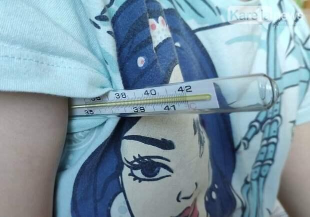 В Карелии заболеваемость острыми кишечными инфекциями превышена в 1,6 раза