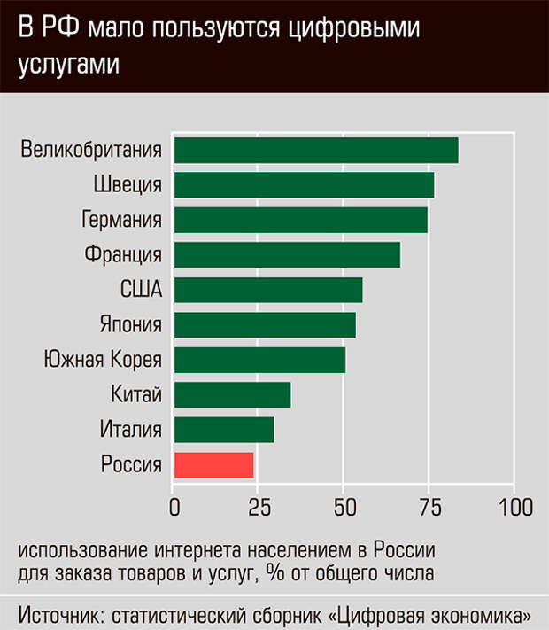 В РФ мало пользуются цифровыми услугами 13-06.jpg