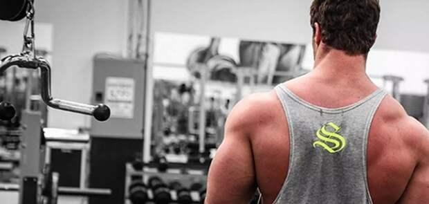 Как растут мышцы: способы, подтвержденные наукой