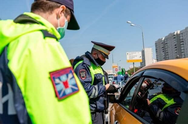 В РФ ужесточили наказание за шторки и каркасные сетки в машине