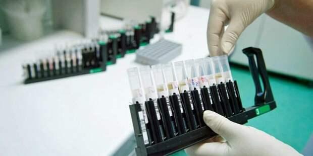 Собянин: В Москве будут проводить 10 000 тестов на коронавирус в сутки. Фото: mos.ru