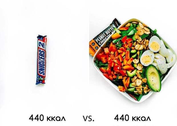 25 доказательств того, что маленькая порция не поможет похудеть