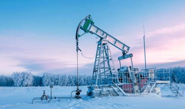 Аукционы подвум нефтегазовым участкам в Арктике назначены на12апреля