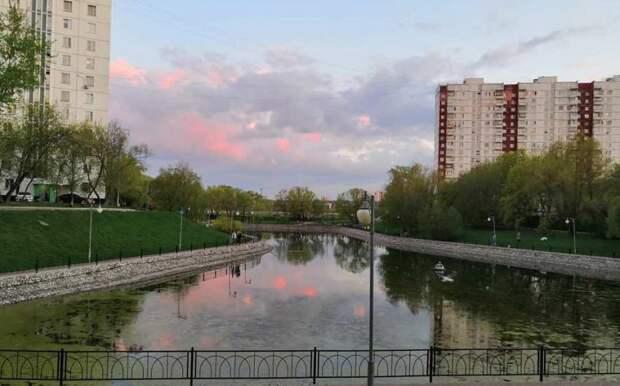 Фото дня: рассвет над прудом
