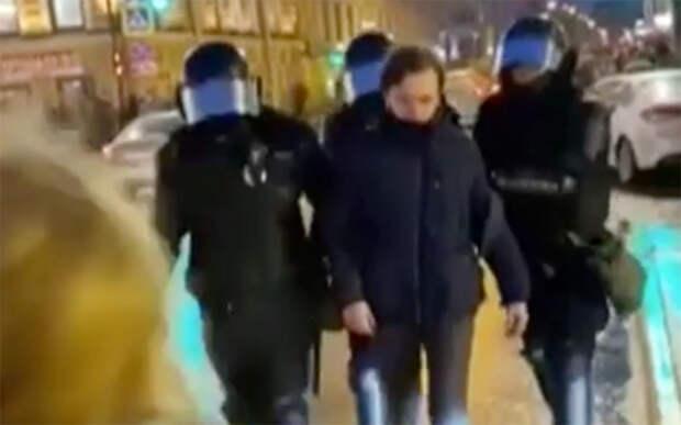 МВД изучит видео с применением силы к женщине на незаконной акции в Петербурге