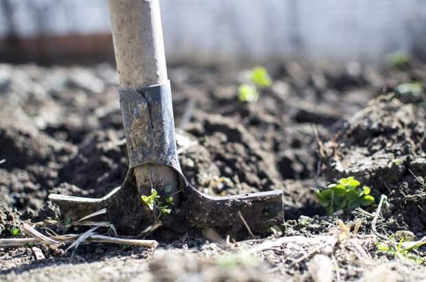 В Удмуртии нефтяники возместили ущерб, нанесенный плодородному слою почвы