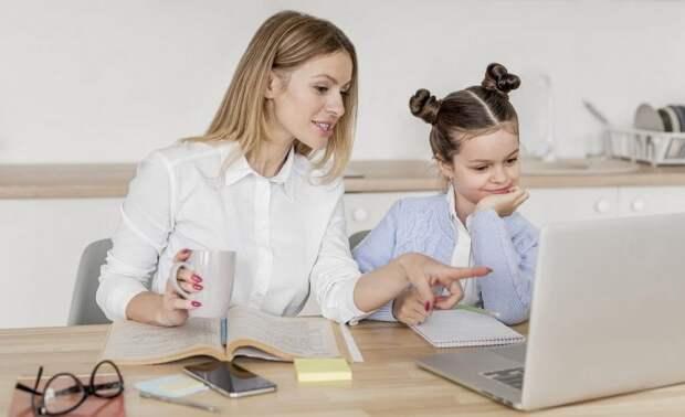 Обучение на дому: как правильно организовать процесс