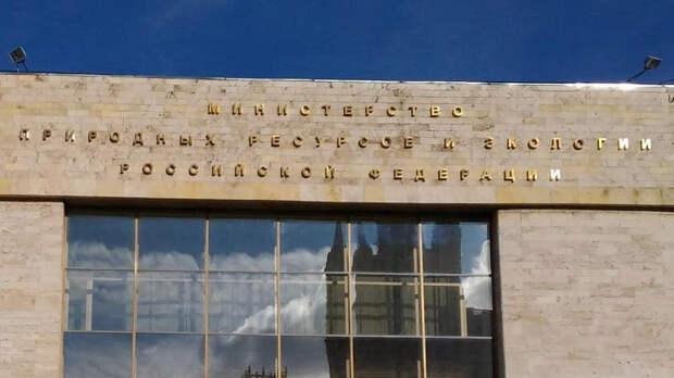Мишустин назначил Цыганова первым замглавы Минприроды