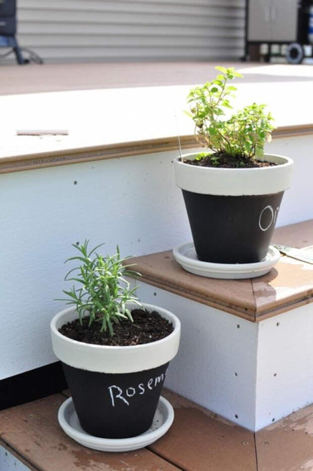 herb-garden-inspirations3 (465x700, 248Kb)