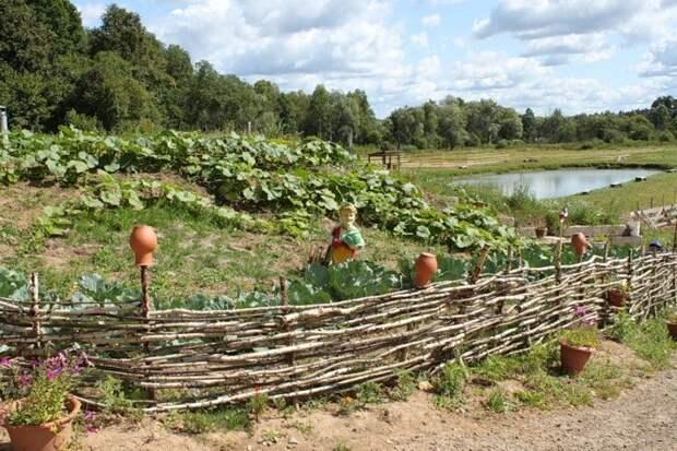Сельский позитив жизнь, люди, село