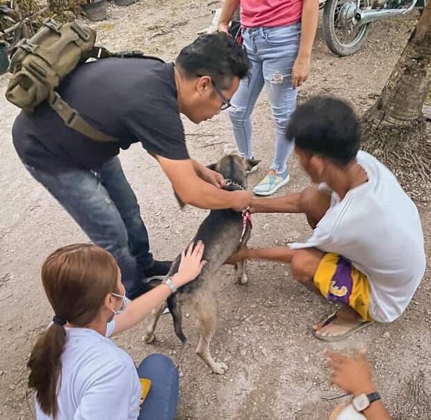 Пёс спас брошенного новорожденного ребёнка