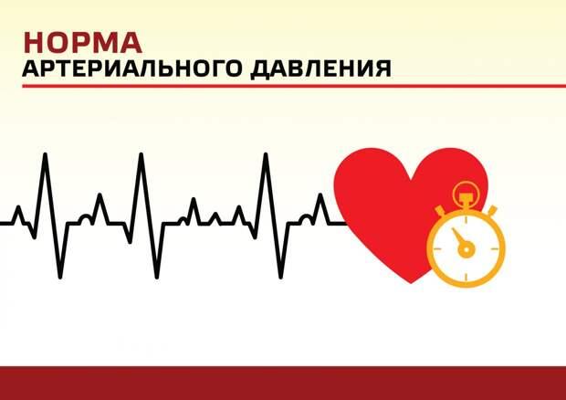 Норма артериального давления