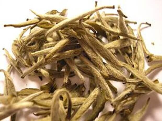 https://upload.wikimedia.org/wikipedia/commons/thumb/a/ae/Bai_Hao_Yin_Zhen_tea_leaf_%28Fuding%29.jpg/267px-Bai_Hao_Yin_Zhen_tea_leaf_%28Fuding%29.jpg