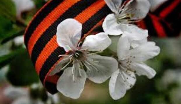 Георгиевская лента под запретом превратится в удавку для Порошенко | Продолжение проекта «Русская Весна»