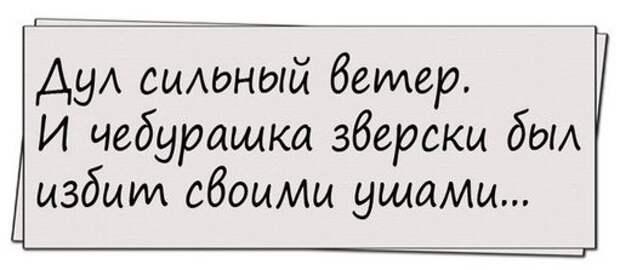 """Если в Питере вас бьют гопники, кричать нужно не """"Помогите! """", а """"Зенит — чемпион"""""""