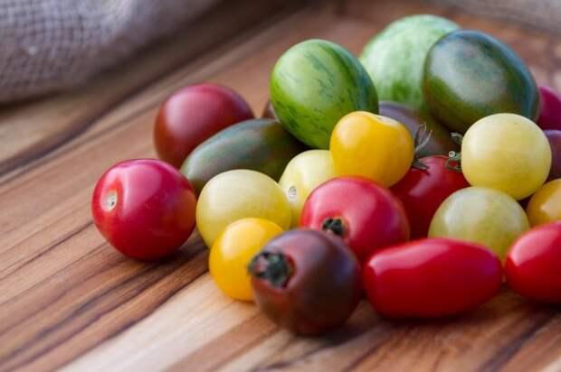 разные сорта томатов