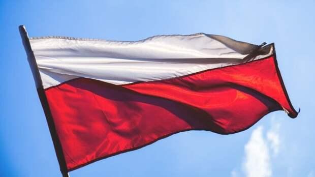 Историк объяснил, почему Польша уничтожает памятники периода СССР