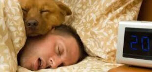 Ученые узнали, как недосып влияет на психику