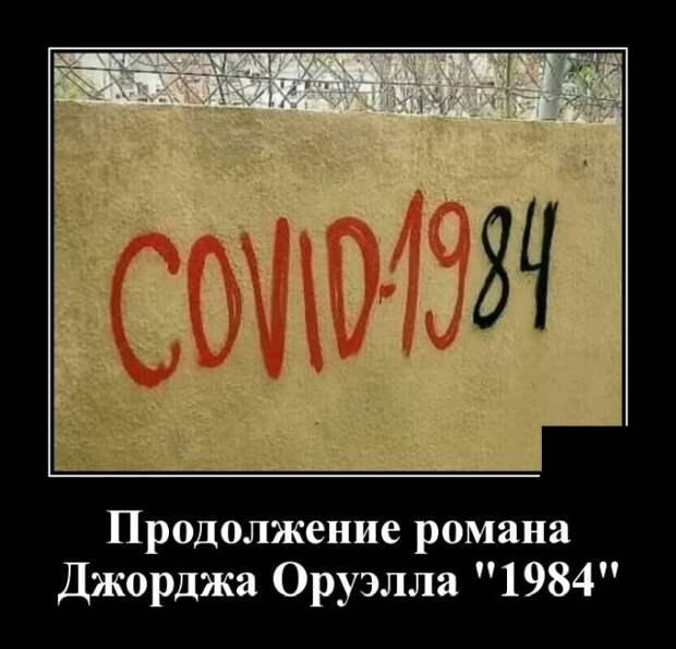 Демотиватор про Covid-19