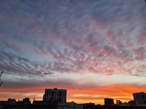 Фото дня: пятнистый закат над Марьиной рощей