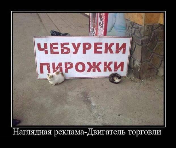 Ржачные демотиваторы (45 фото)