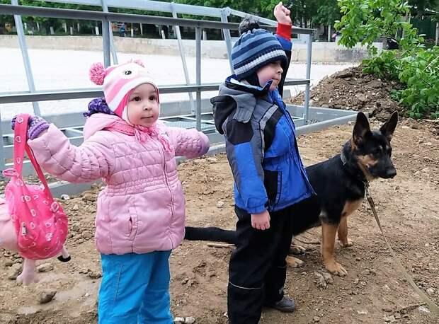 Нашу овчарку боялись и дразнили дети. Почему я рада, что так получилось?