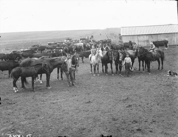 Как поднималась американская целина. Архивные фотографии пионеров Великих равнин конца 19-го века 35