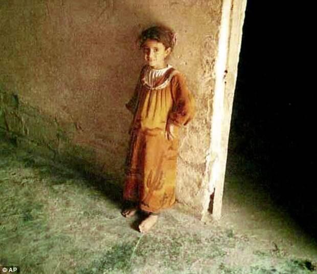 Инцидент вЭль-Махмудии: убийства иизнасилование, которые потрясли мир