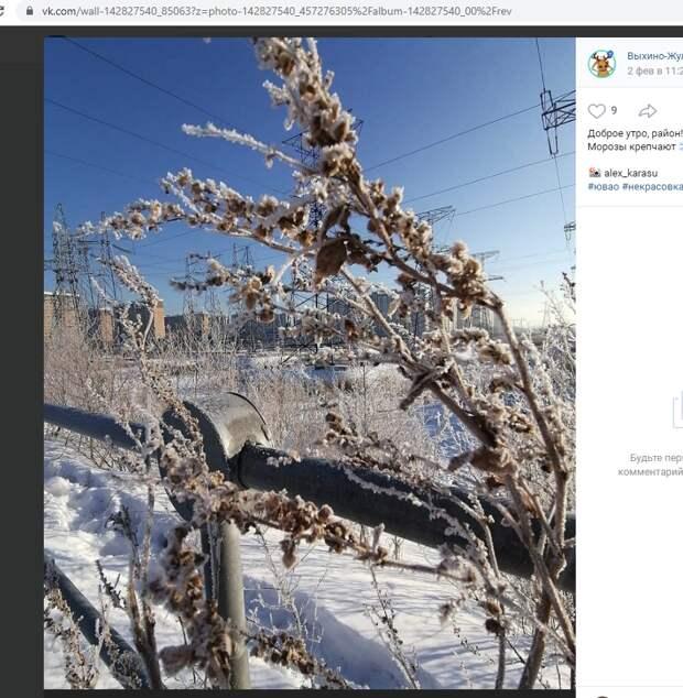 Фото дня: мороз в Некрасовке крепчает