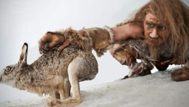 Наши древние пращуры впадали в спячку, подобно медведям