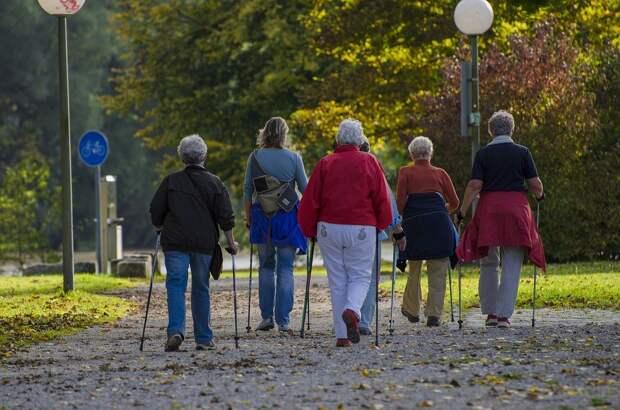 Пенсионеры из Северного научатся правильно шагать с палками