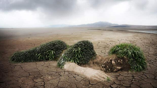Экологический долг человечества