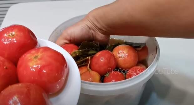 Бочковые помидоры на зиму. Самые вкусные помидоры: легкий рецепт!