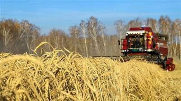 Экспортеры пшеницы из РФ резко снизили цену в апреле, видя риск в прогнозе пошлины - союз