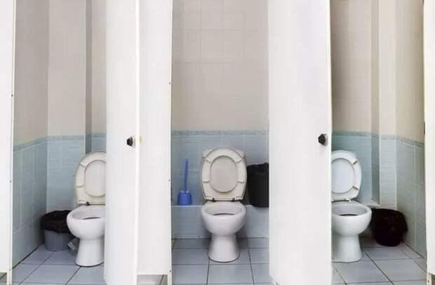 Туалетная разведчица