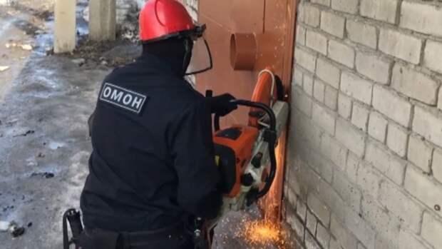 У жителя Алтайского края в гараже обнаружили конопляную оранжерею